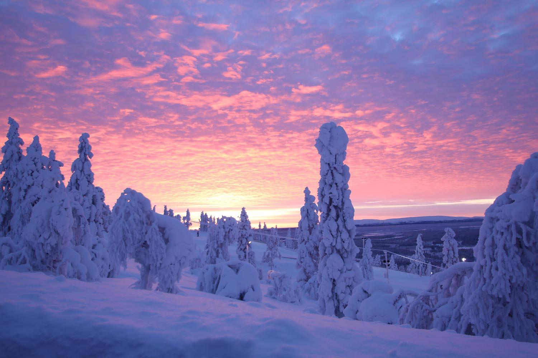 http://www.hulluporo.fi/wp-content/uploads/2014/11/winter-crazyreindeer.jpg