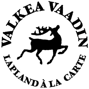 ValkeaVaadin-logo